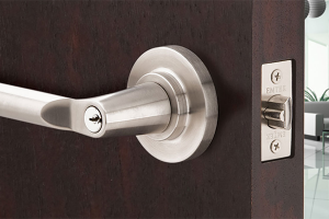 Emtek Hardware Silver Door Handle Brown Door