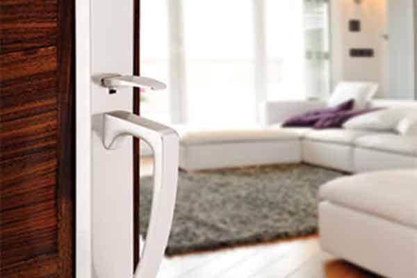Emtek Hardware Silver Door Handle on Brown Door
