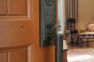 Emtek Hardware Dark Door Handle on Brown Door